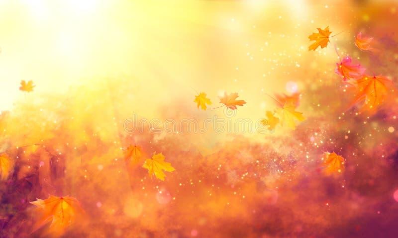 Fond de chute Lames colorées d'automne images libres de droits