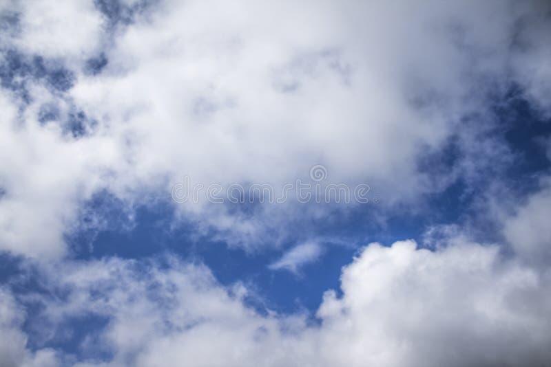 Fond de ciel bleu avec les cumulus pelucheux photos libres de droits