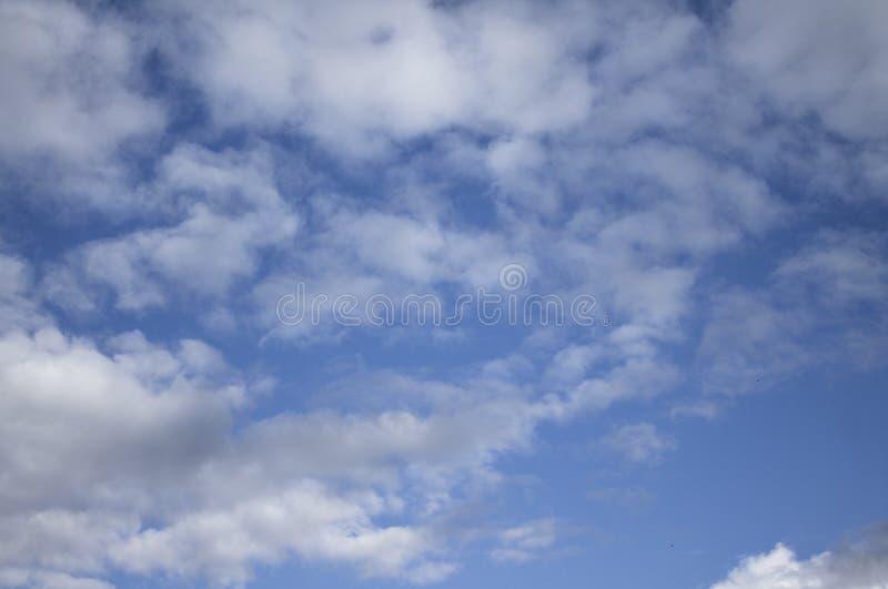 Fond de ciel bleu avec les cumulus pelucheux photos stock