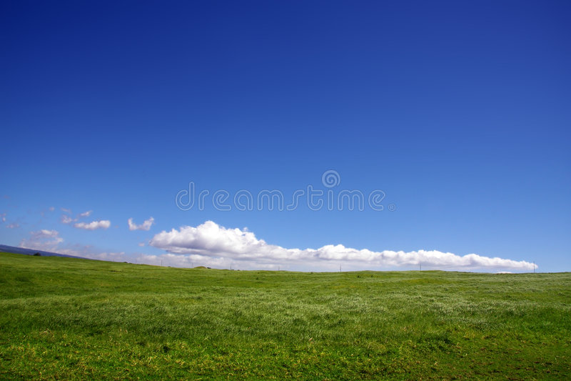 Fond de ciel et d'herbe photo libre de droits