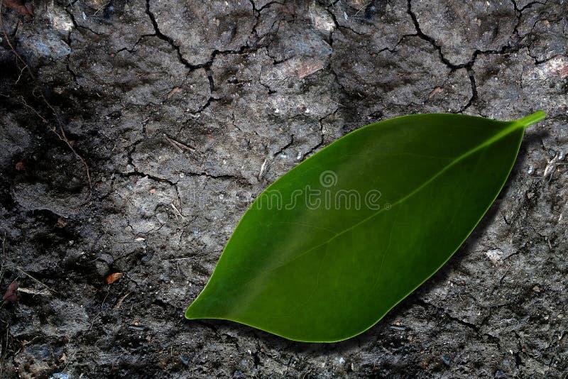 Fond de concept d'écologie photographie stock libre de droits