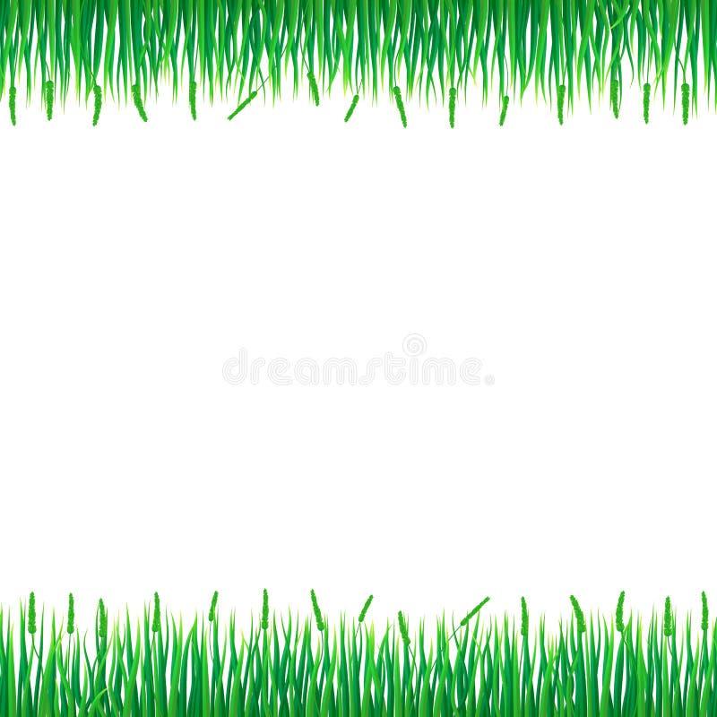 Fond de concept d'herbe verte, style réaliste illustration stock