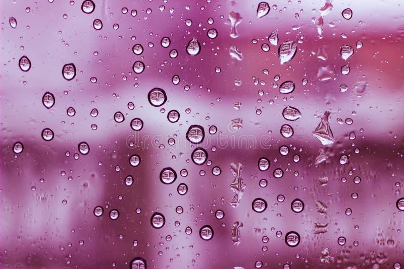 Fond de condensat de rose de l'eau de fenêtre photographie stock