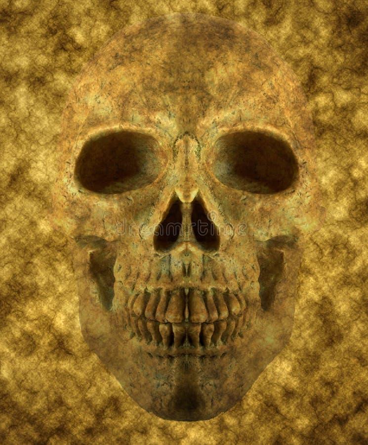 Fond de crâne illustration stock