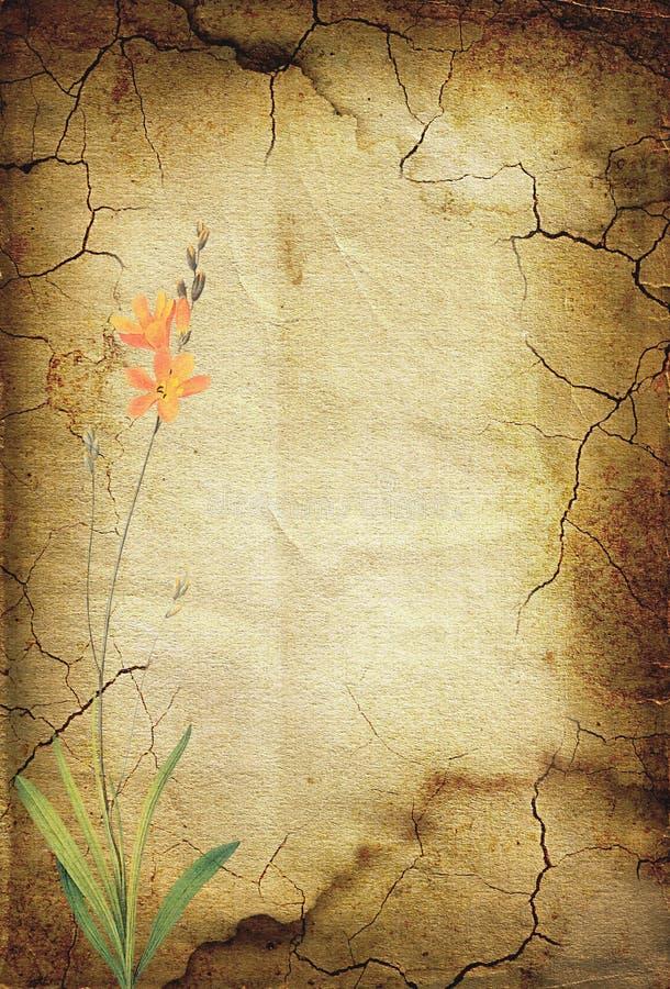 Fond de cru avec des fleurs. 28 illustration de vecteur