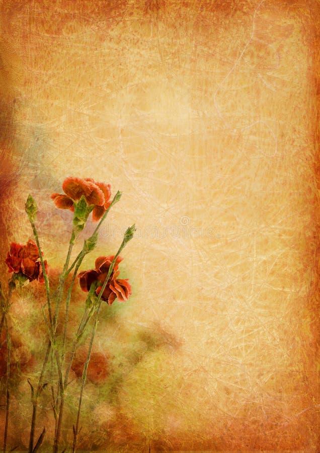 Fond de cru avec des fleurs d'oeillet illustration de vecteur