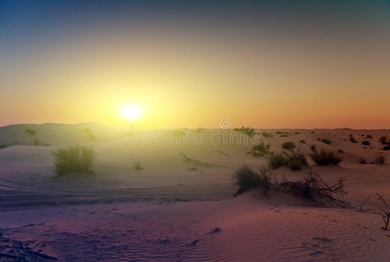 Fond de dunes de sable de désert de coucher du soleil de ressort photographie stock