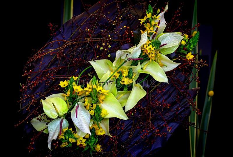 Fond de fleur avec l'anthure et les plantes de laceleaf images libres de droits