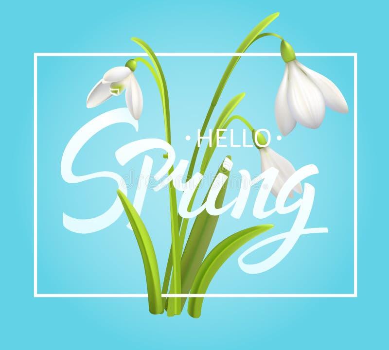 Fond de fleur de perce-neige et bonjour lettrage de ressort Illustration EPS10 de vecteur illustration stock