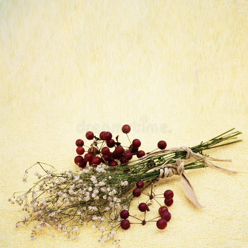 Fond de fleur de vintage images stock