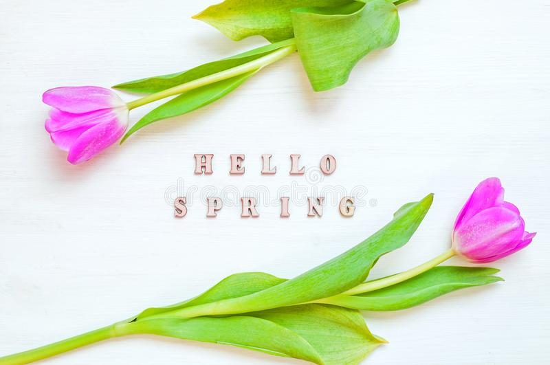 Fond de fleur de ressort - fleurs jaunes de tulipe et ressort en bois d'inscription bonjour sur le fond blanc photos libres de droits