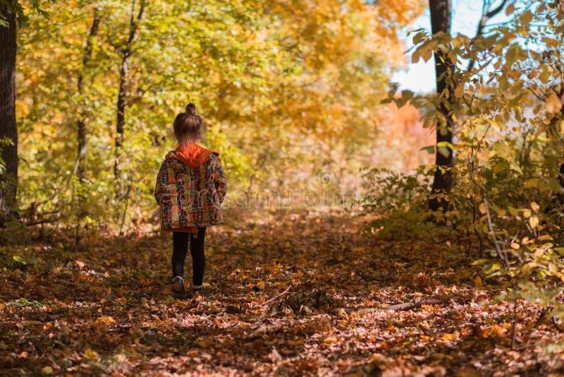 Fond de forêt d'automne de fille de parc naturel de chute photographie stock libre de droits