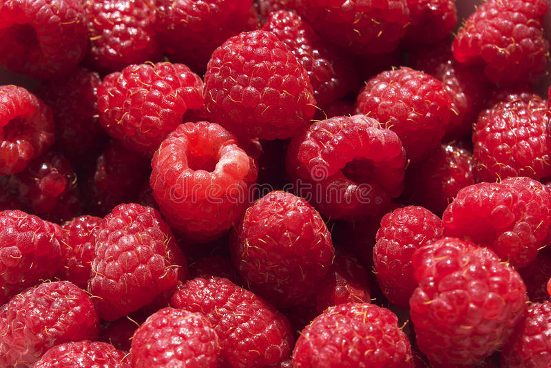 Fond de fruit de framboise image stock