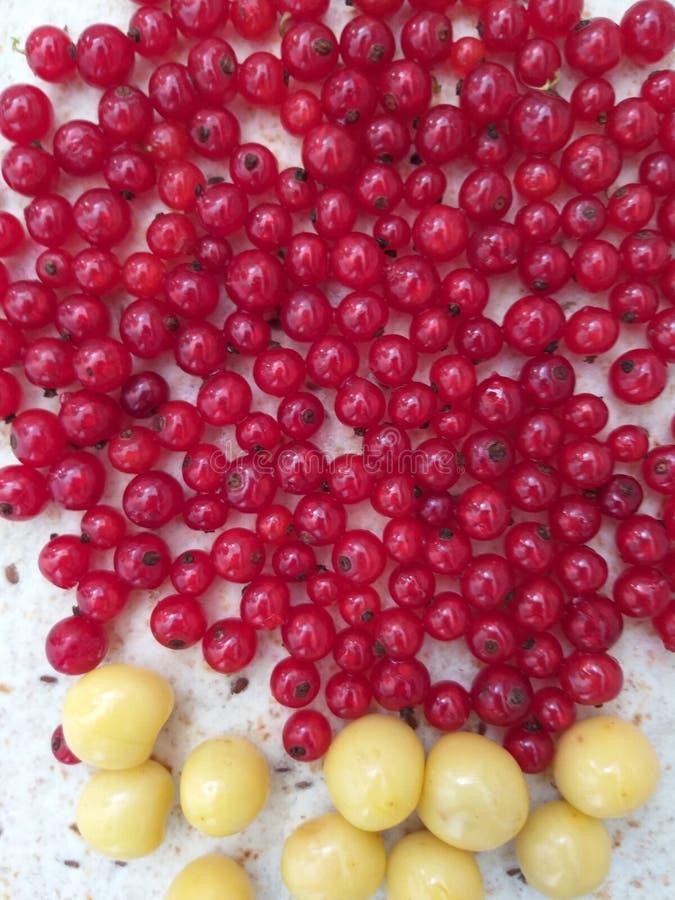 Fond de fruit, nourriture utile, baie d'été image stock