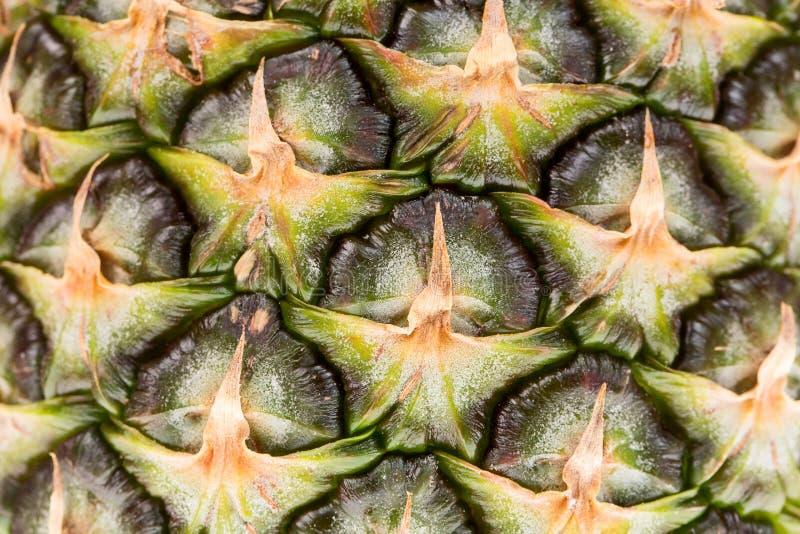 Fond de fruit tropical d'ananas jaune frais délicieux Fermez-vous vers le haut de la texture ou du fond image libre de droits