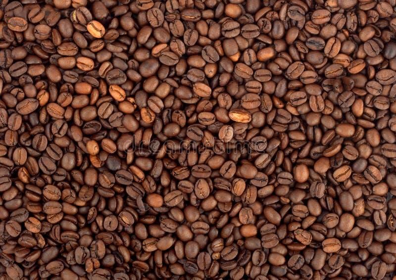 Fond de grain de café images libres de droits