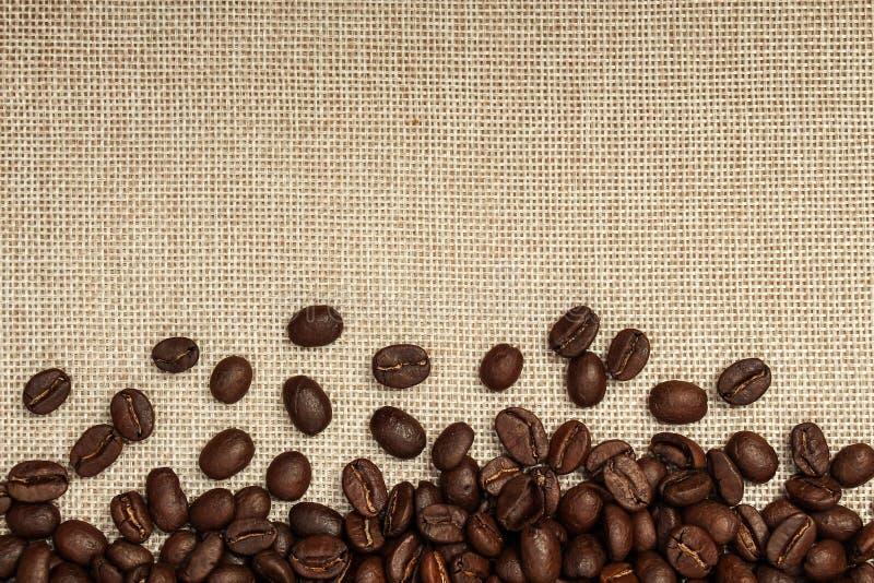 Fond de grain de café photos libres de droits