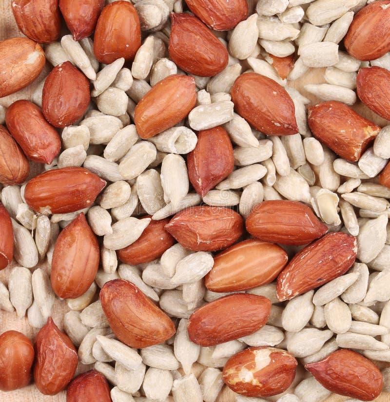 Fond de graines et d'arachides de tournesol images stock