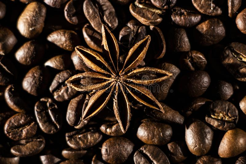 Fond de grains de café avec différentes épices : étoiles d'anis et bâtons de cannelle Concept de Noël photos libres de droits