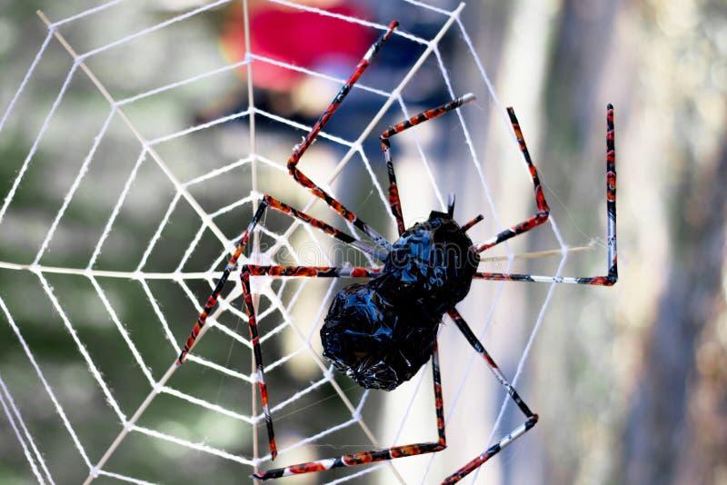 Fond de Halloween avec la toile d'araignée comme symboles de partie de Halloween images stock