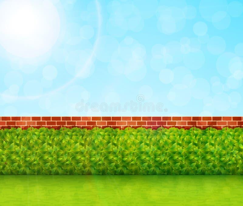 Fond de jardin avec le vecteur d'herbe verte et de mur de briques illustration stock