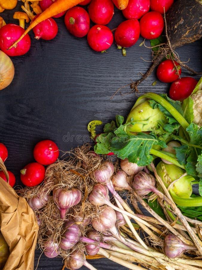 Fond de l?gumes frais Carotte, radis, chou-fleur, chou-rave, concept de jardinage de récolte d'ail Nourriture saine v?g?tarisme photos stock