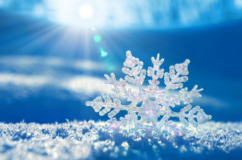 Fond de l'hiver. image libre de droits