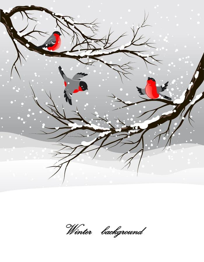 Fond de l'hiver avec le bullfinch illustration libre de droits
