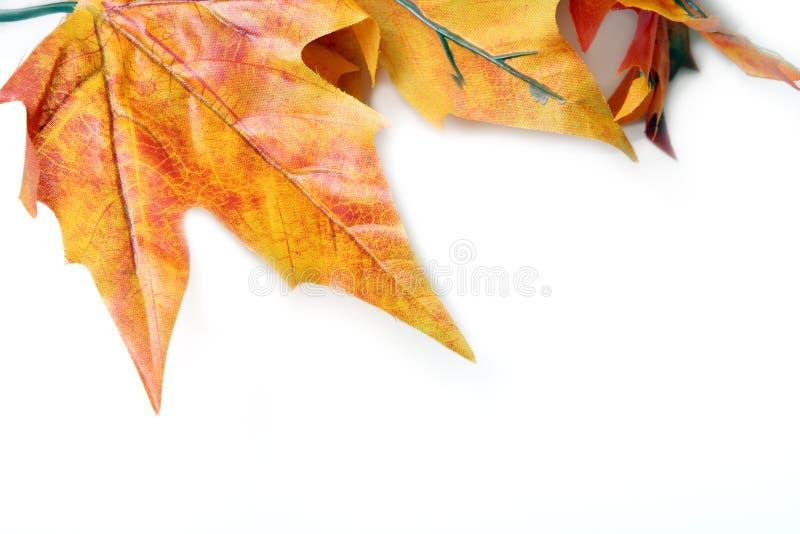 Fond de lames d'automne