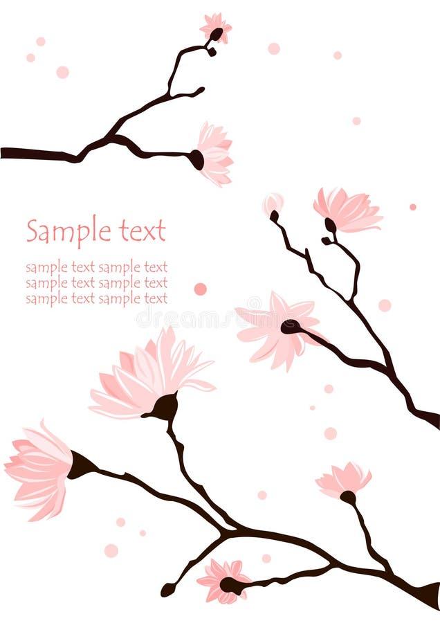Fond de magnolia illustration stock