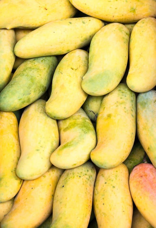 Fond de mangue photo stock