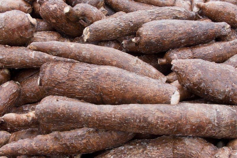 Fond de manioc photos stock