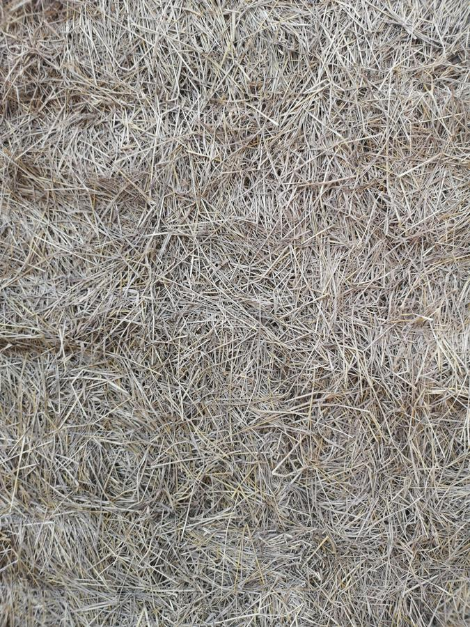 fond de mur de paillettes de paille de riz photo libre de droits
