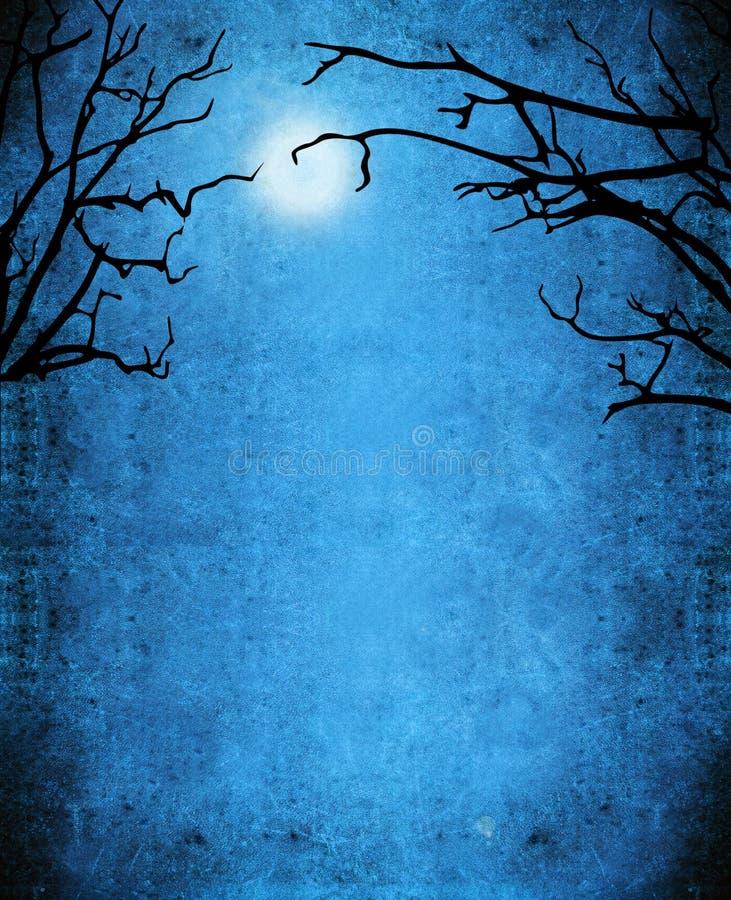 Fond de mystère de nocturne