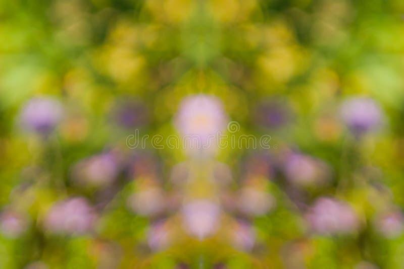 Fond de nature brouillé par ton d'or jaune chaud de couleur d'une vue recherchant par le feuillage orange d'un arbre contre le ci photos libres de droits