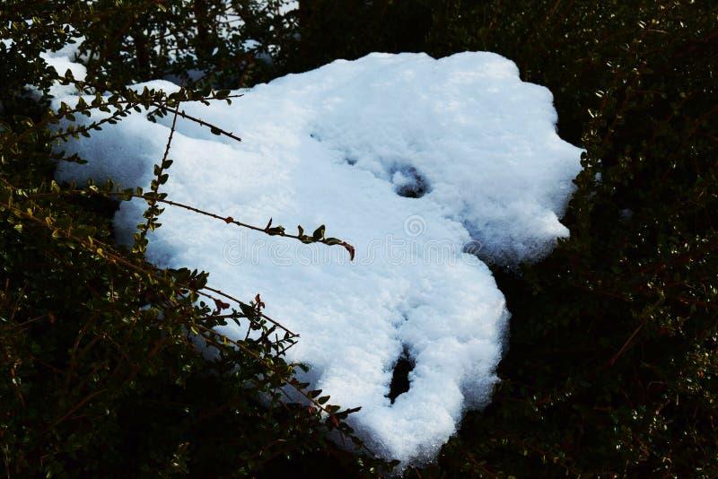 Fond de neige et d'herbe en montagnes de Dolomiti, Italie photographie stock libre de droits