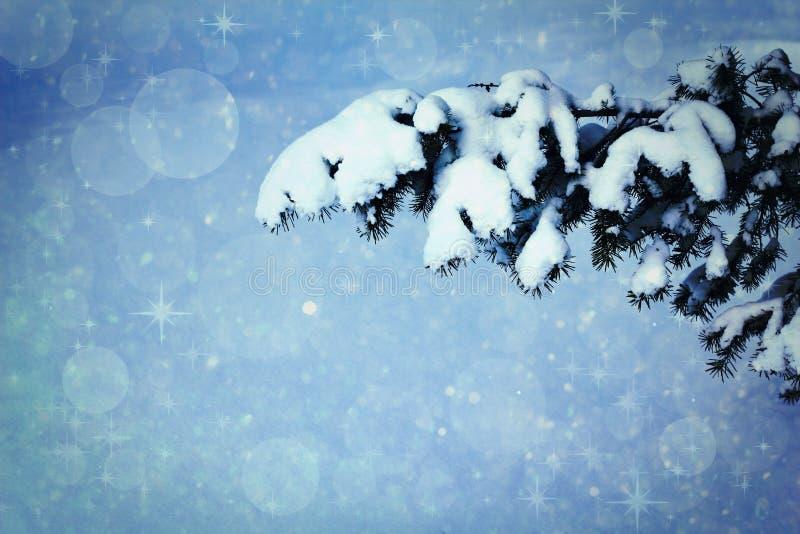 Fond de Noël de neige de l'hiver photo libre de droits