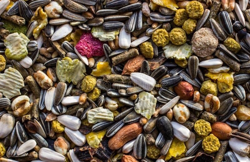 Fond de nourriture de rongeurs photos stock