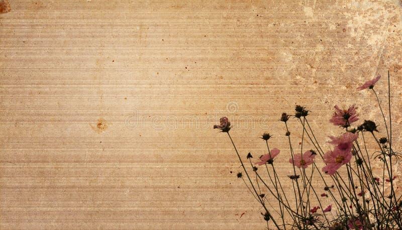 Fond de papier de fleur de cru illustration libre de droits