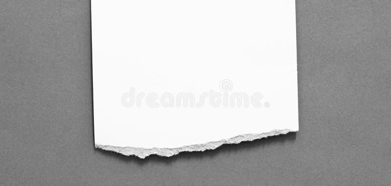 Fond de papier de texture déchiré par déchirure photos stock