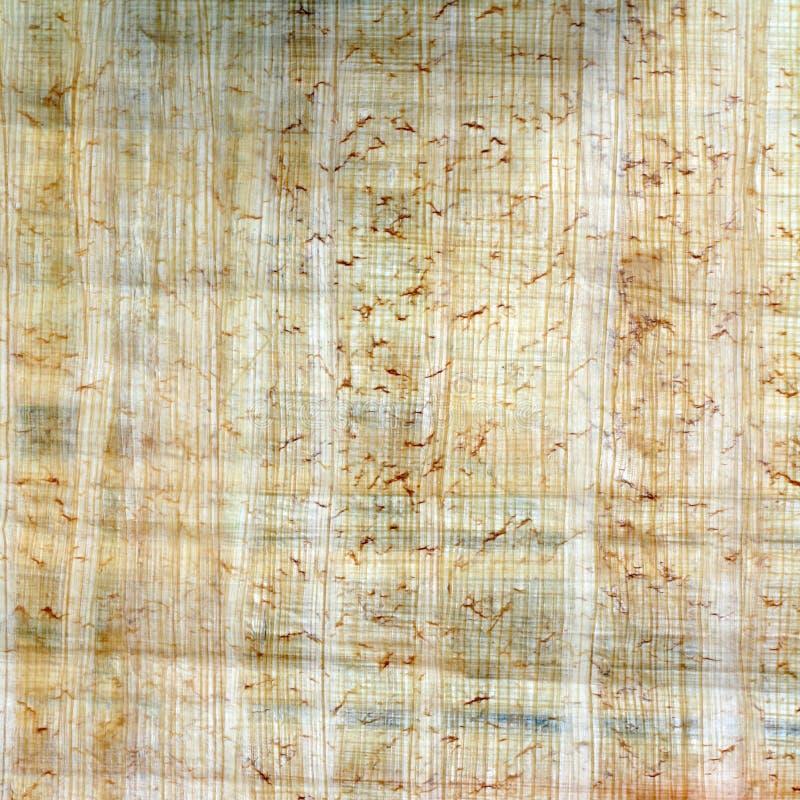 Fond de papyrus photo stock
