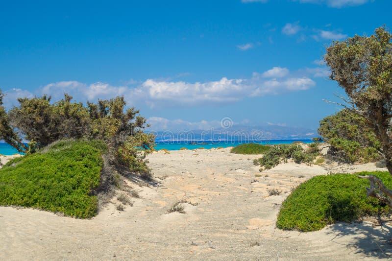 Fond de paysage d'île de Chrissi image libre de droits