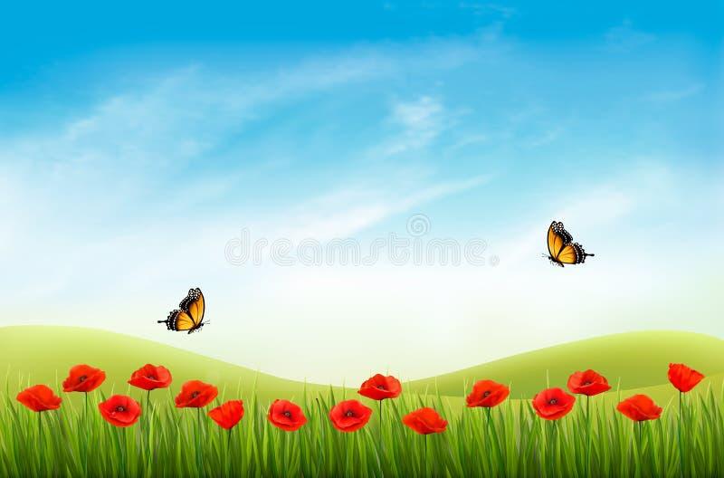 Fond de paysage de nature d'été avec les pavots rouges illustration stock