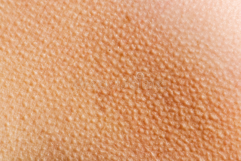 Fond de peau de Goosebumps photographie stock