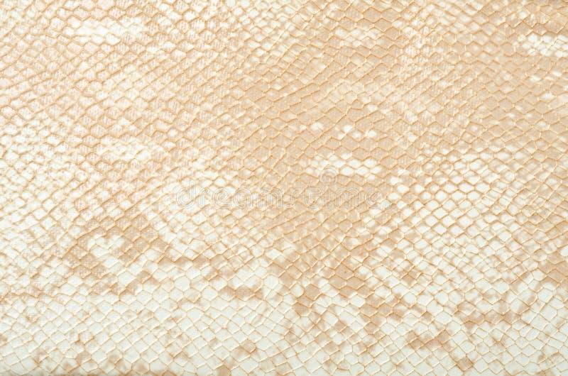 Fond de peau de serpent photos stock