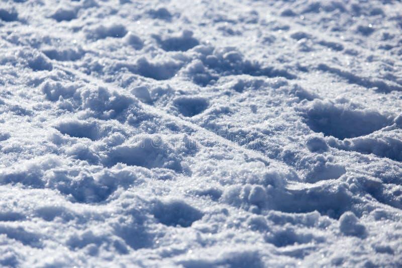 Fond de pente hors-piste de ski images stock