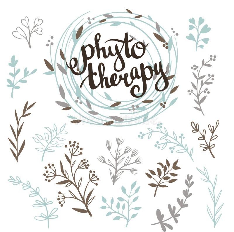 Fond de Phytotherapy Lettrage élégant dans la guirlande et ensemble d'herbes illustration stock