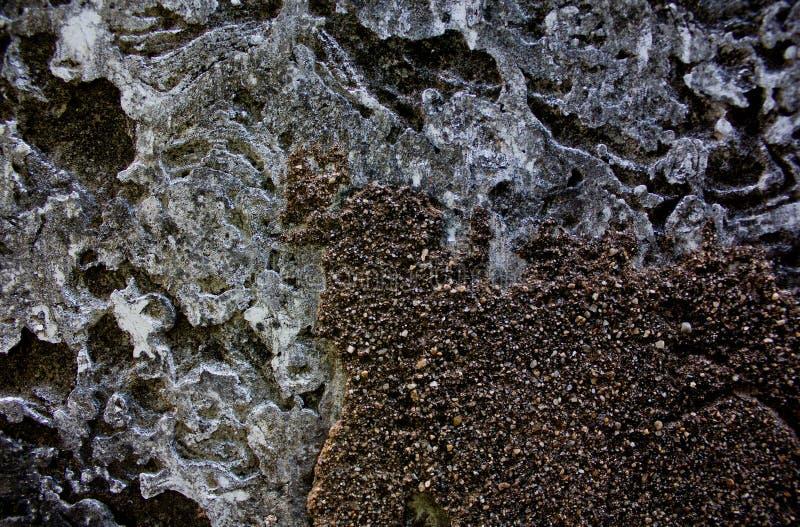 Download Fond de plancher de ciment photo stock. Image du mosaïque - 87705496