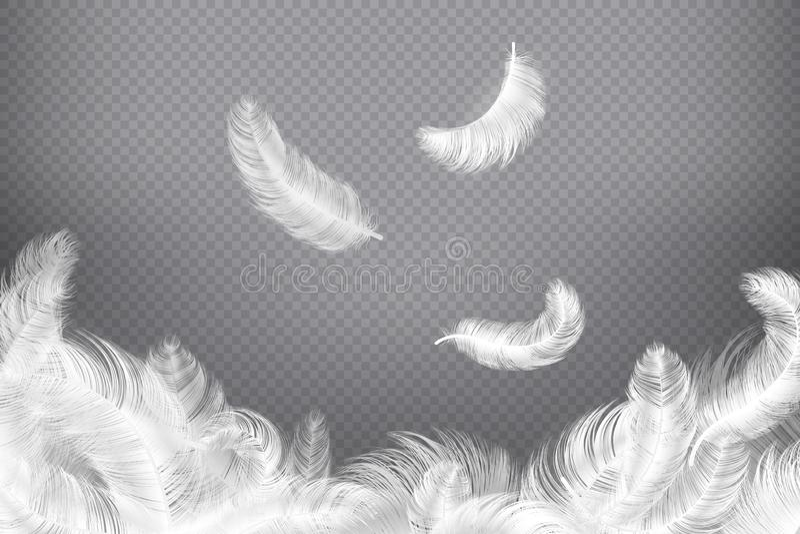 Fond de plume blanche Plumes d'oiseau ou d'ange de plan rapproché Plumes légères en baisse Illustration rêveuse illustration stock
