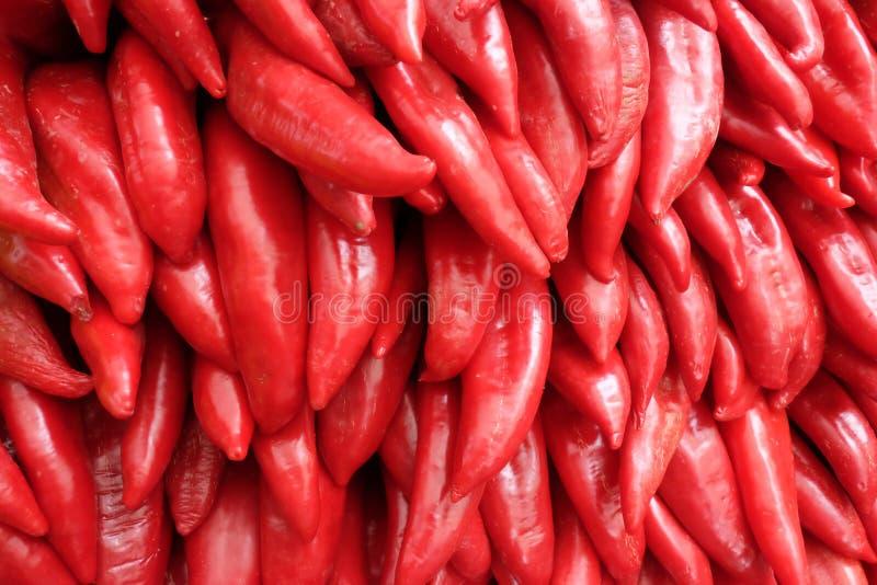 Fond de poivron rouge Poivron doux photos stock